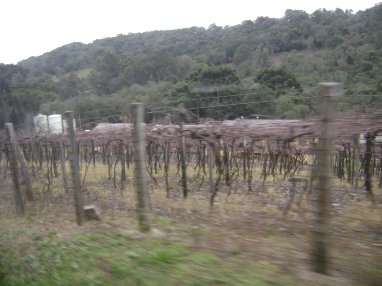 Caminhos da Colônia, em Caxias do Sul