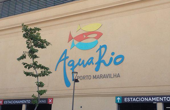 AquaRio: mundo marinho no Rio de Janeiro